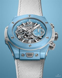 Hublot catalogue ( 18 days left )