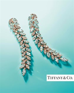 Tiffany & Co catalogue ( More than a month )