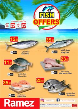Groceries offers in the Ramez catalogue in Abu Dhabi