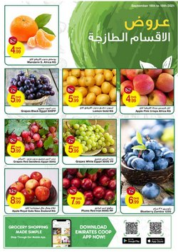 Emirates Coop offers in the Emirates Coop catalogue ( Expires today)