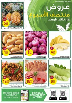Groceries offers in the Emirates Coop catalogue ( Expires tomorrow)