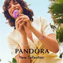Pandora catalogue in Sharjah ( 16 days left )