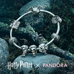 Pandora offers in the Pandora catalogue ( More than a month)