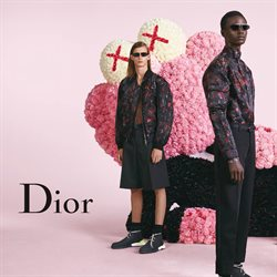 Dior offers in the Dubai catalogue