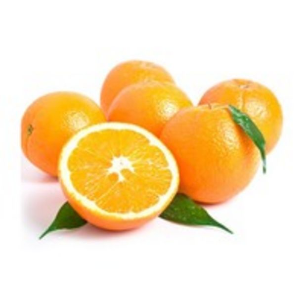 Navel Orange offers at 4 Dhs